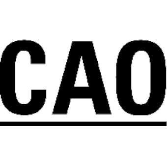CAO logo-340
